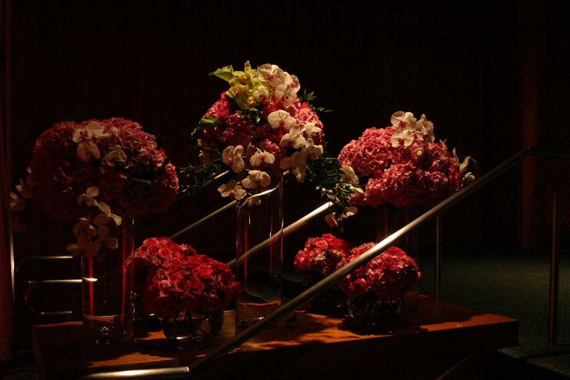 Spotlight on the flowers