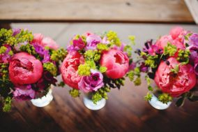 Floral Designs by Christa Rose