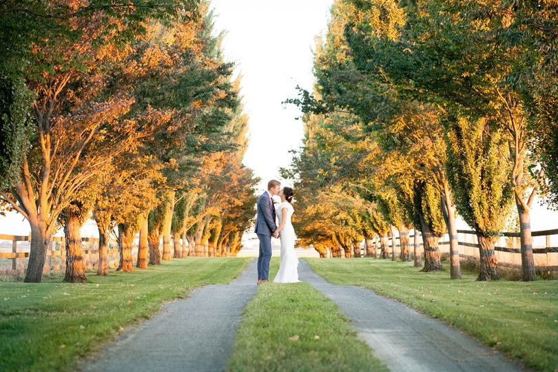 A kiss on the tree lined drive