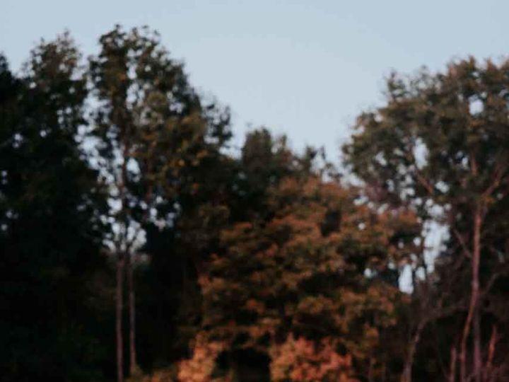 Tmx 1522724039 B38bd837c3a65bc5 1522724038 Dbf0de6e94ee534b 1522724024472 54 524 Raleigh, NC wedding photography