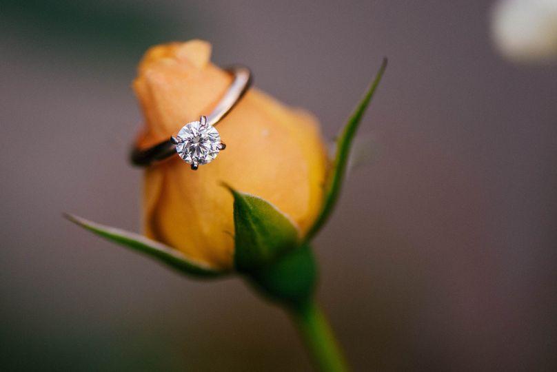 devin paul engagement 0058 51 567187