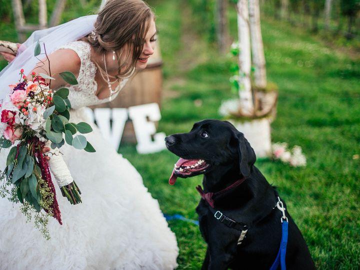 Tmx 1511633959190 Untitled37391842295l Albany, NY wedding photography
