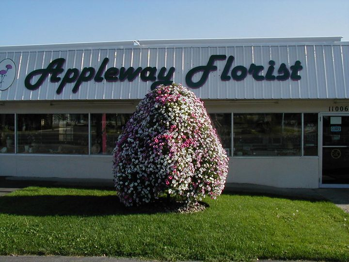 Tmx P8110050 51 1040287 Spokane, WA wedding florist