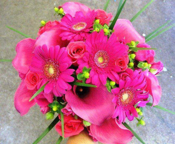 Tmx 1320297133563 Hotpinkrosesandminicallalilies Knoxville wedding florist