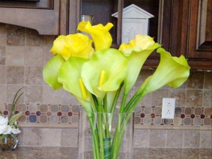 Tmx 1320385178474 Monicagreencallalilies3 Knoxville wedding florist