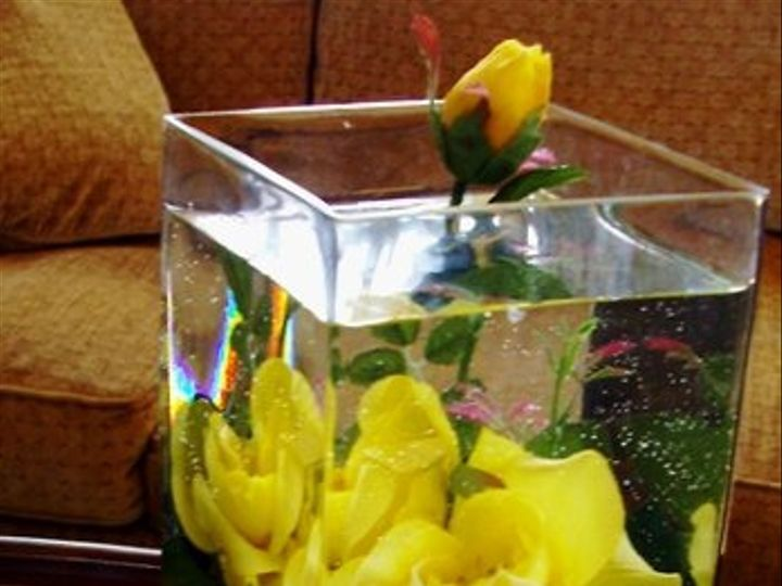 Tmx 1320385367833 Monicayellowroses2 Knoxville wedding florist