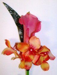 Tmx 1320421835727 2494527 Knoxville wedding florist