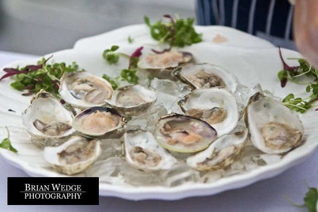 Tmx 1236054787203 Oysters2 Kennebunkport, Maine wedding catering