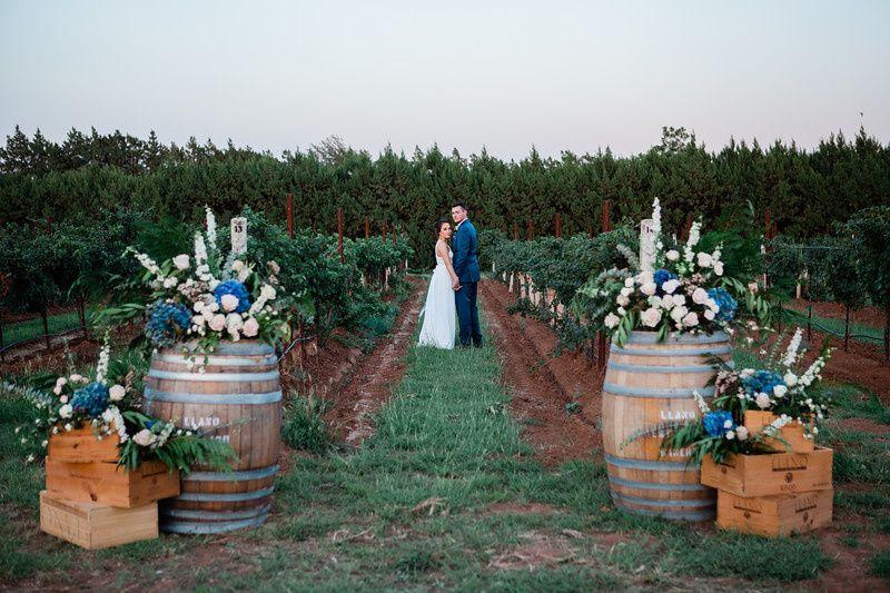 Vineyard Portraits