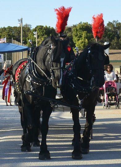 Each horse is approx 2000lbs each