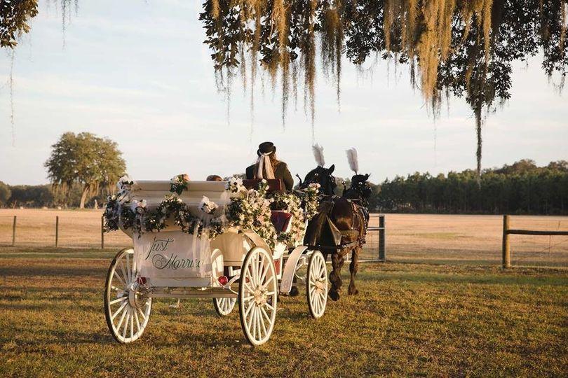 Elegant wedding ride