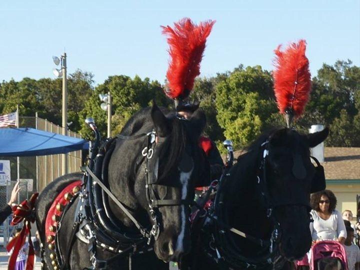 Tmx 1499957102368 Black Team Dade City, FL wedding transportation