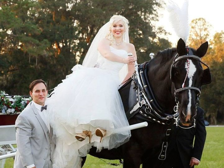 Tmx 1499957110045 Bride On Oreo Dade City, FL wedding transportation