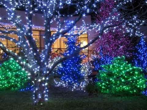 outdoorchristmaslights21
