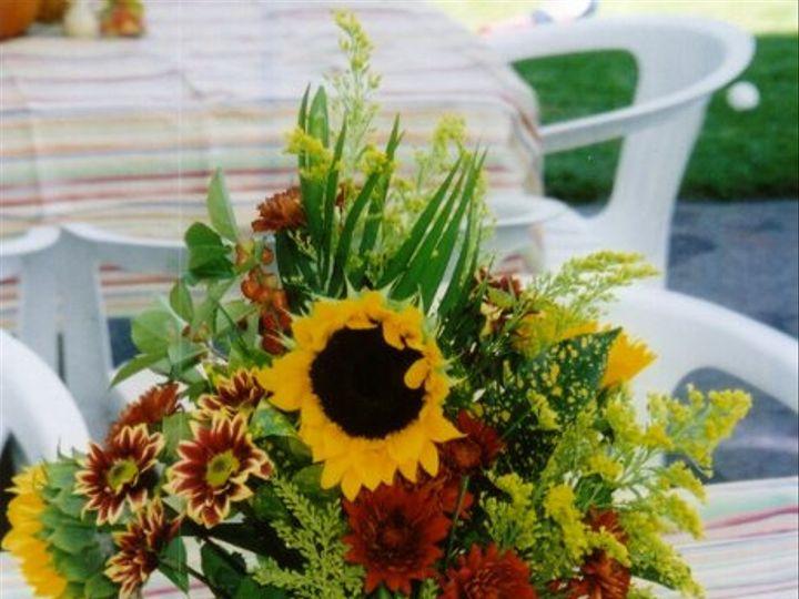 Tmx 1203794343566 Pumpkin Franklin wedding invitation