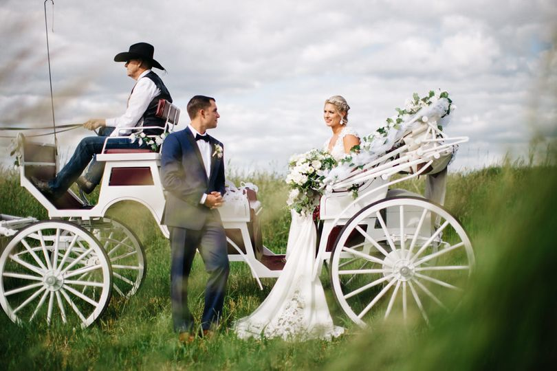 horse drawn carriage wedding 1069 51 494387