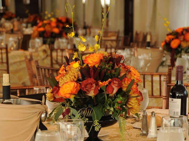 Tmx 1372794786768 Pj348 Stony Brook, NY wedding florist