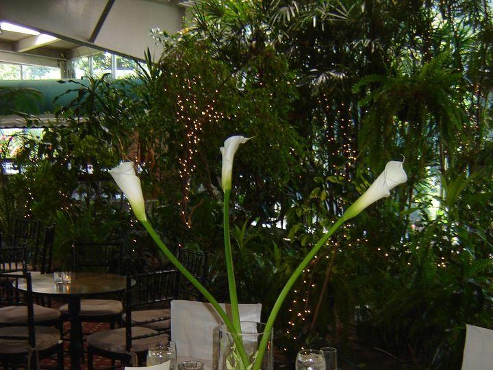 Tmx 1385997424143 Anita1 Stony Brook, NY wedding florist