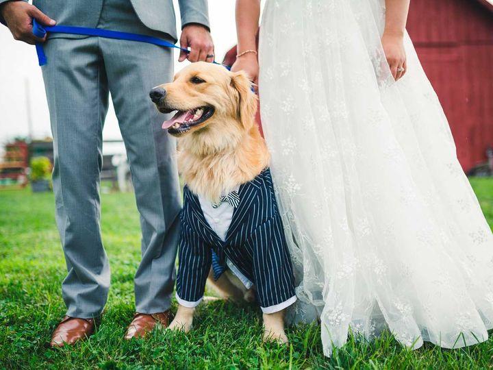 Tmx Country Barn Lancaster Wedding 51 942487 157858798367749 Newtown, PA wedding photography