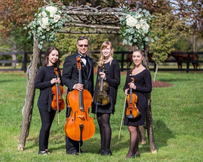 Quartet Arbor