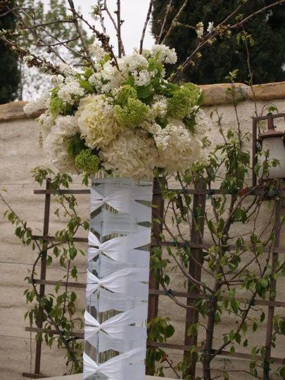 flowersoutdoor2015 01 11 07 09 23