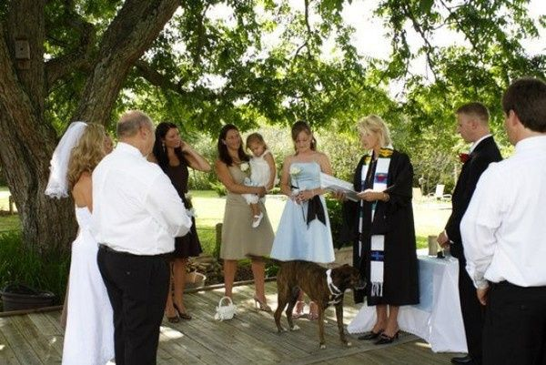 Tmx 1414175474537 Dog K  J Durham, NC wedding officiant