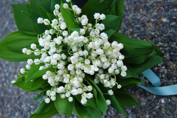 Tmx 1256917928217 PhotobyBethSweeney Kirkland wedding florist