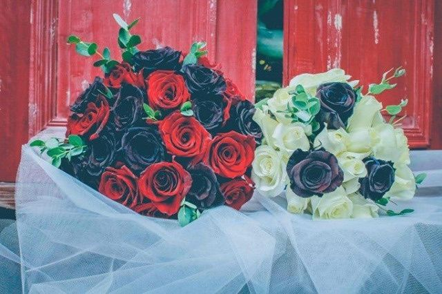 Tmx 122178839 356146038989268 2211353579715293697 N 51 148587 160566856222603 Campbell, California wedding florist