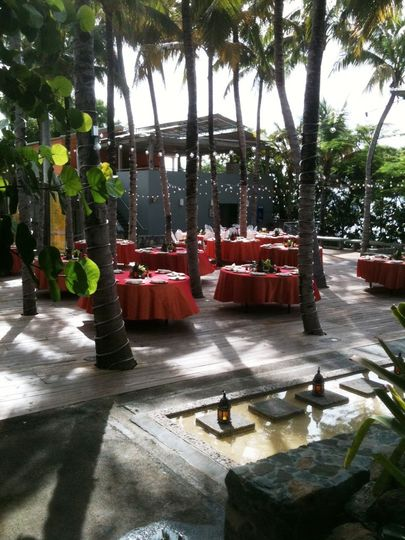 red table palm court