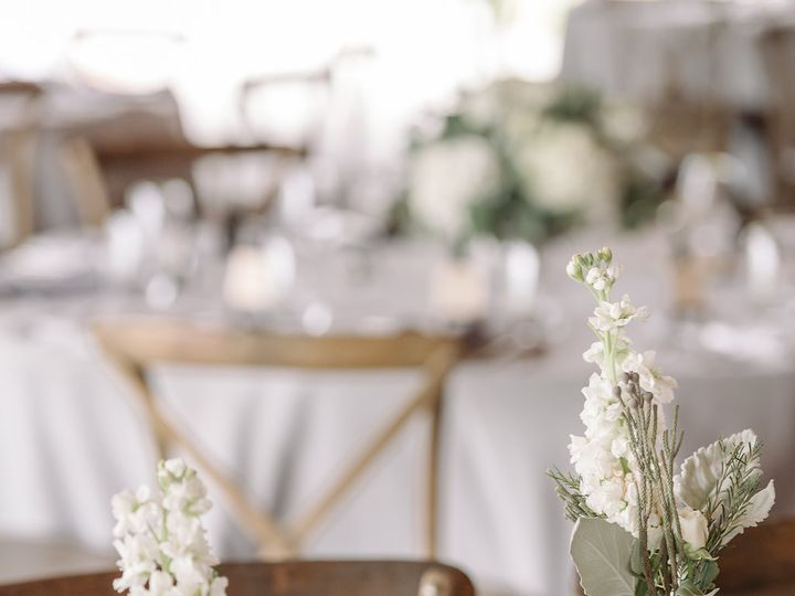 Tmx 1478891025186 Norfolkzoophotographeraustria 48 Virginia Beach, VA wedding planner