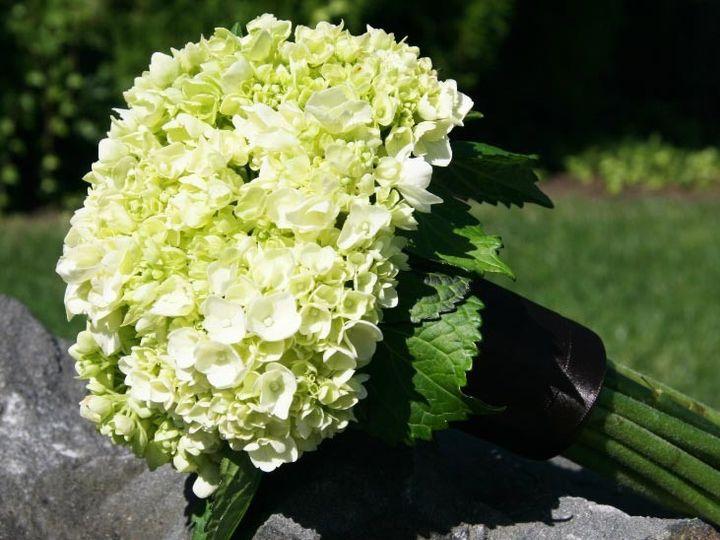 Tmx 1459575380251 Bb1023 Simple Green Hydrangea Bridesmaids Bouquet Oregon City, OR wedding florist