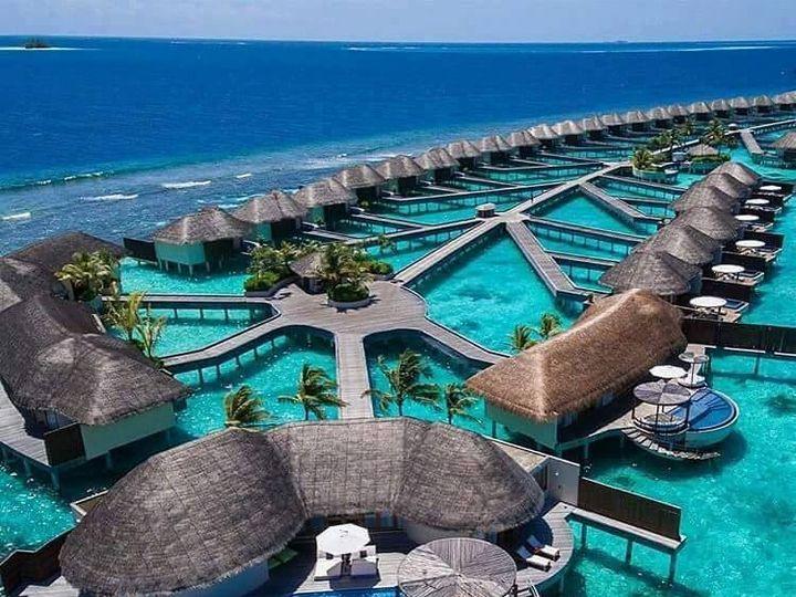 Tmx Maldive Over The Water Bungalow 51 1036687 Davenport, FL wedding travel