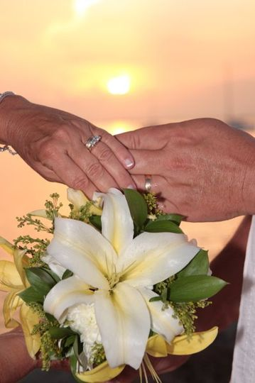 Barbara Knowles Wedding Photography and Planner - Rings
