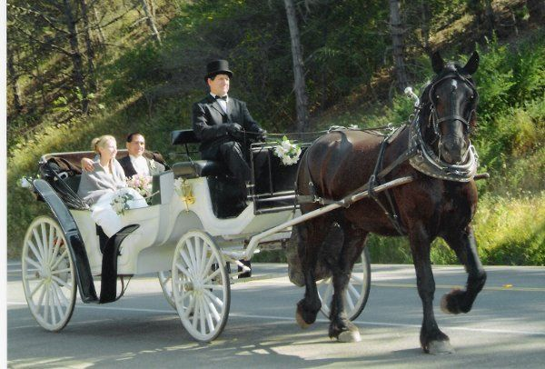 Tmx 1272564442716 Goodcambriawed San Luis Obispo wedding transportation