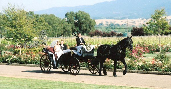 Tmx 1272564479122 Bestdanlinds San Luis Obispo wedding transportation