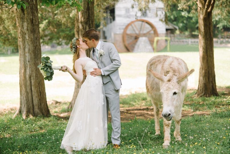 wedding 573 x3