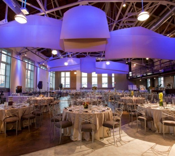 Palladium saint louis venue saint louis mo weddingwire 800x800 1281119632746 settingthescene 800x800 1471976495771 calebandchristopherforalive junglespirit Image collections