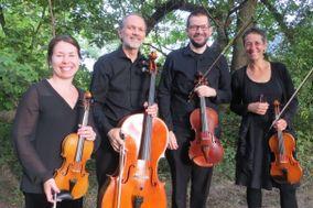 Cavatina String Quartet