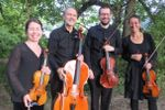 Cavatina String Quartet image