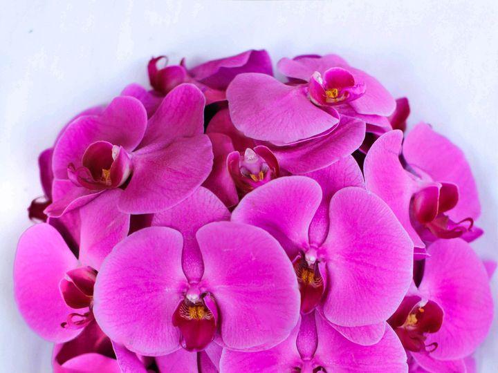 Tmx 1413866940660 Mg2299 44 Fremont, California wedding florist