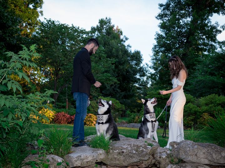 Tmx Katie And Max Dogs 51 1891887 159802081286531 Bixby, OK wedding officiant