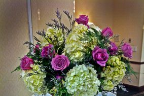 Exotica Florist, Inc.