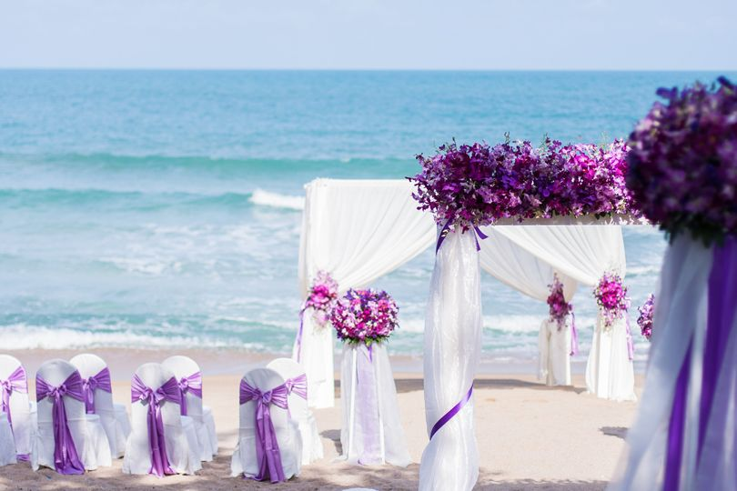 White and purple theme