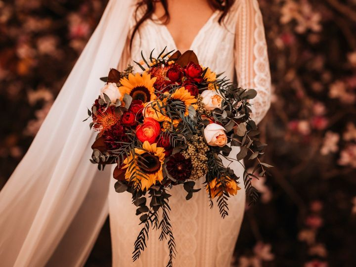 Tmx 4 51 646887 162402765176496 West Des Moines, IA wedding planner