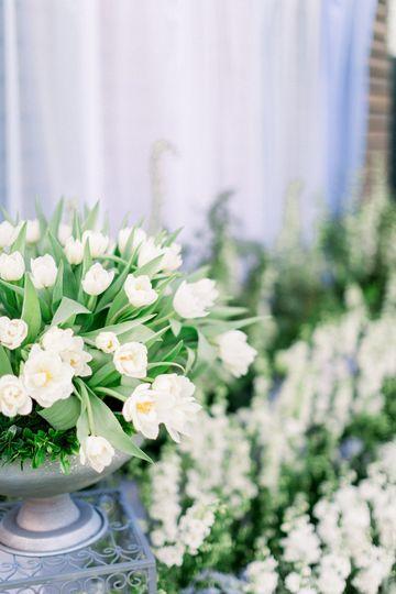 ceremony flowers tulips1 51 108887