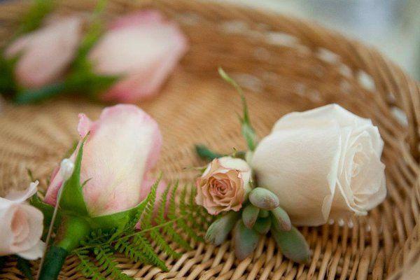 Tmx 1338576776290 78 Wilmington wedding florist