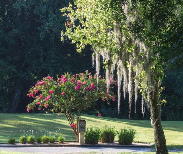 Hundreds of photo opportunities at the Eagles Golf Club