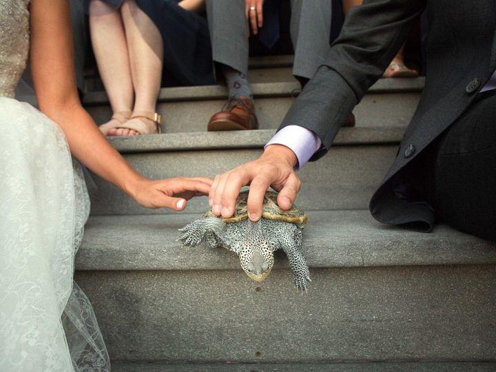 Tmx 1515792798 6834616b503379c8 1515792796 9ec2c1fd516adb41 1515792796314 1 Baltimore Zoo Wedd Baltimore, MD wedding venue