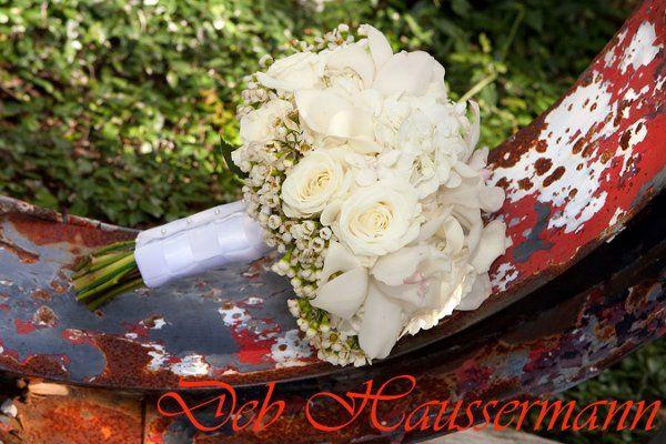 Tmx 1259509743480 HAUS73 Niceville wedding photography