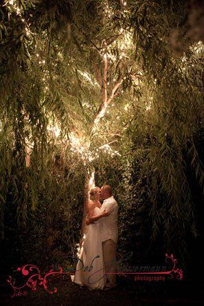 Tmx 1277657071640 Meredith03WCopy Niceville wedding photography
